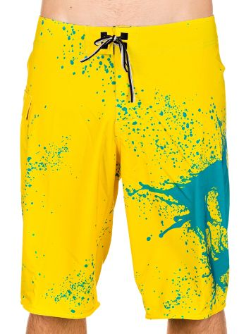 DC Cartilage Boardshorts