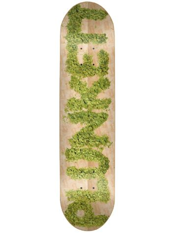 "Skate Mental Plunkett Spliff 8.5"" Deck"