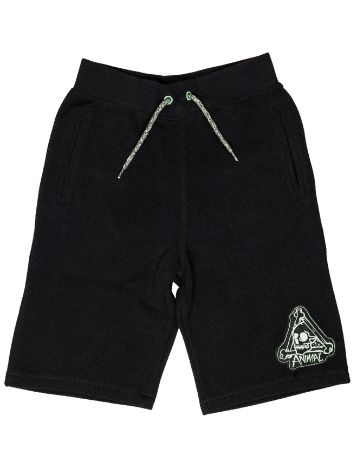 Animal Laterz Shorts Jungen