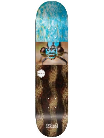 "Blind Buggers R7 8.125"" Smith Deck"