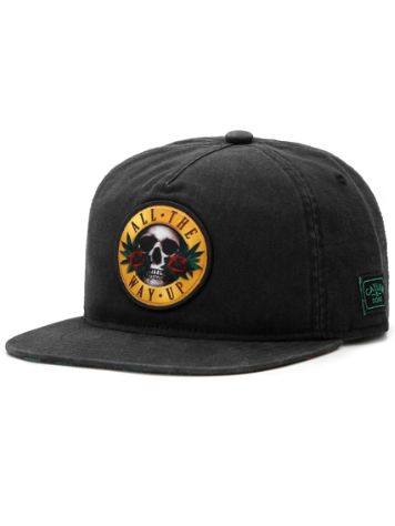 Cayler & Sons C&S WL Budz N' Skullz Old Cap